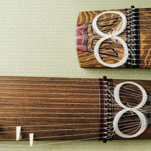 お箏って高価な楽器のイメージだけど、購入した方が良い?